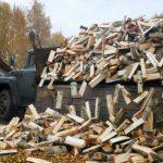 Более 500 домов в селах Смоленщины обеспечили дровами