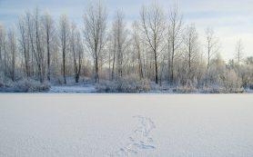 Смоленские полицейские спасли провалившегося под лед пенсионера