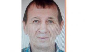 В Смоленской области завершил поиски пенсионера из Белоруссии