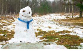 Погода продолжит проверять смолян на морозоустойчивость
