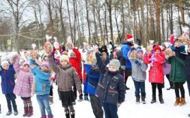 Смоленские участники акции #МыВместе организовали новогодний праздник для 70 сельских детей