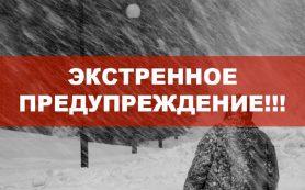 Экстренное предупреждение от МЧС: метель в Смоленской области продолжится