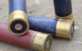 Жителя Рославльского района подозревают в стрельбе из ружья у дома соседки
