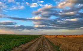 Смоленская область первой в России начала финансово поддерживать вовлечение земель в сельхозоборот