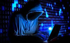 Житель Смоленской области поплатился за хакерские атаки на сайты госучреждений
