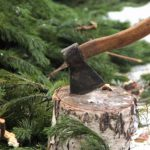 Под Смоленском «черный лесоруб» рискнул 7 годами свободы ради ремонта крыши