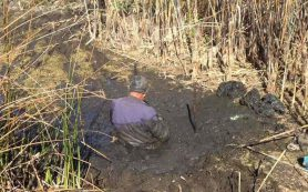В Смоленской области из болота спасли тонущего мужчину