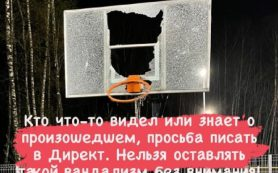 В Смоленске неизвестные устроили погром на спортивной площадке в «Соловьиной роще»