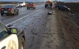 Смоленских водителей предупредили о «сказочной» пешеходке