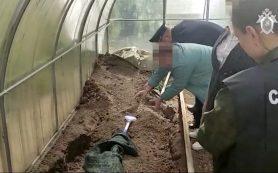 Жительница Вязьмы, убившая зятя, дала признательные показания