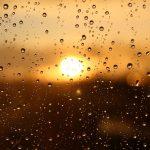 25 июня на Смоленщине местами пройдут кратковременные дожди