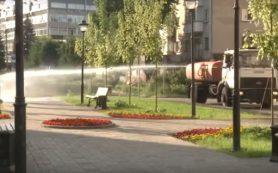 В Смоленске из-за жары усиленно поливают зеленые насаждения