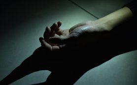 Под Смоленском погибла 11-летняя девочка