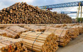 Алексей Островский ознакомился с работой Смоленского деревообрабатывающего комбината