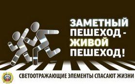 В Смоленске прошла профилактическая акция «Заметный пешеход»