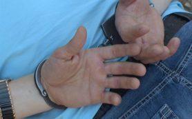 В Смоленске задержали напавшего на девушек извращенца