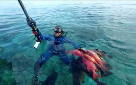 Снаряжение для подводной охоты от магазина «В ластах»