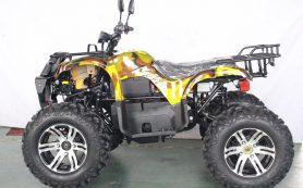 Современные электроквадроциклы
