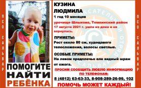 В Смоленской области продолжается поиск годовалой девочки