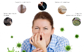 Характеристики профессиональных нейтрализаторов запаха
