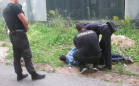 Появились подробности брутального задержания смолян в «Лопатинском саду»