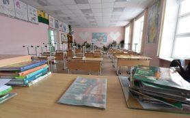 В Смоленской области 58 классов переведены на дистанционное обучение